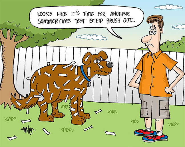 Dog Days Of Summer Comic Download