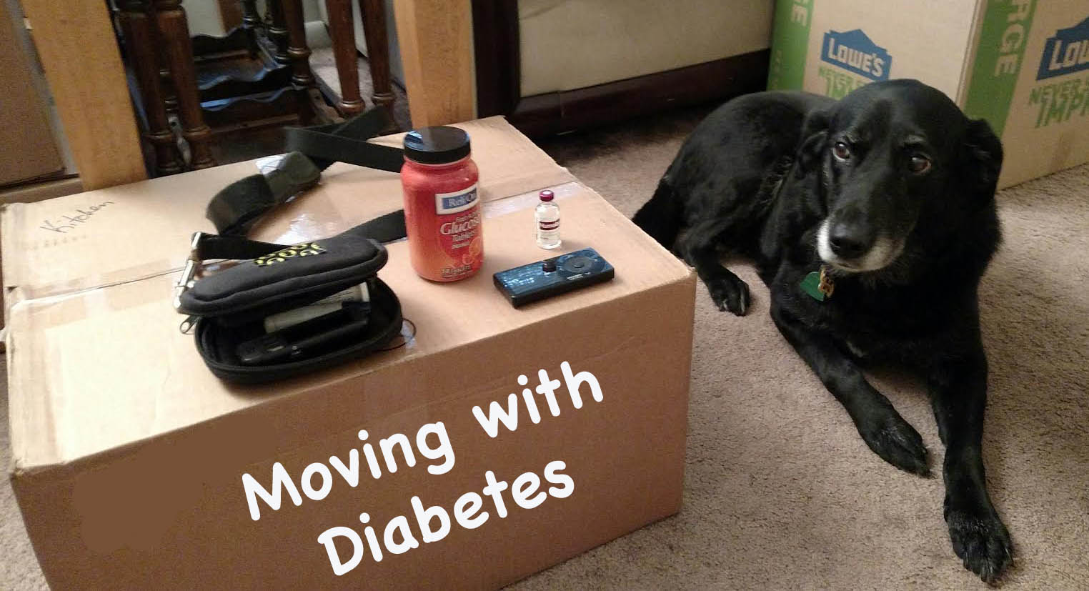 Moving Day with Diabetes