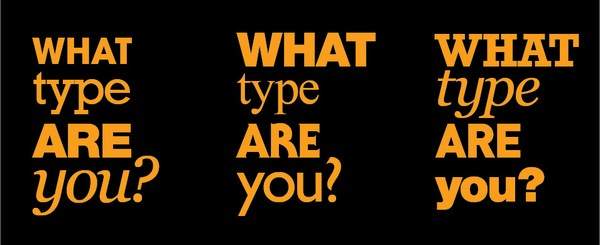 WhatDType