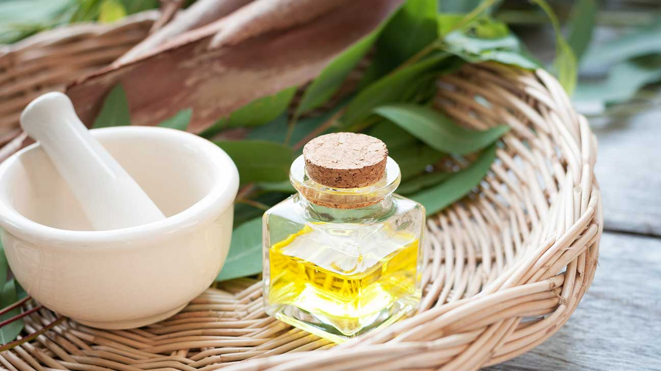eucalyptus oil Eucalyptus essential oil is a common aromatherapy oil used in diffusers and massage blends combining eucalyptus with related essential oils (and using the right carriers.