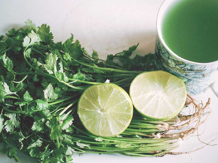 Heavy Metal Detox Diet: Symptoms and Recommended Foods