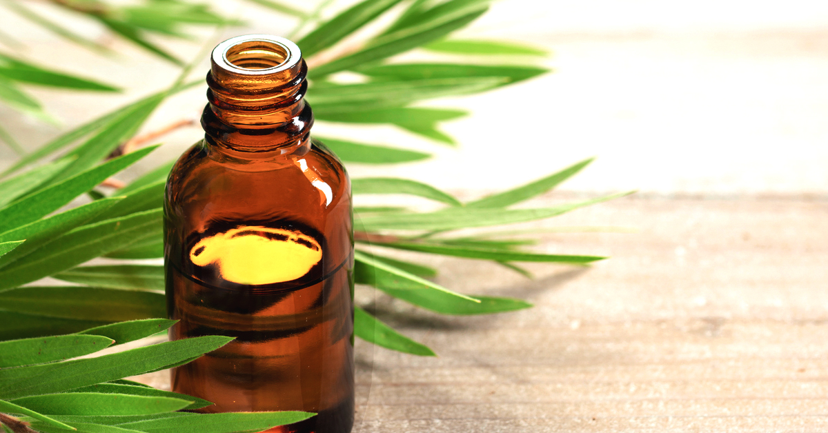 Tea Tree Oil for Warts: Benefits, Uses, and Does It Work