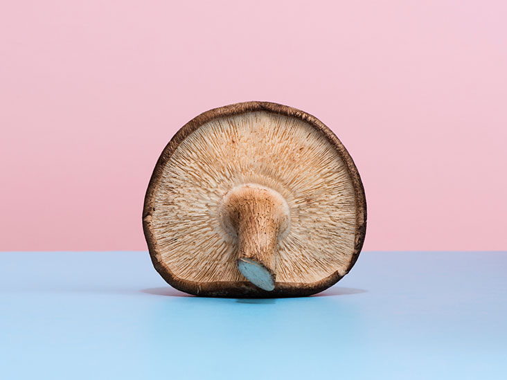 6 Mushrooms That Act as Turbo-Shots for Your Immune System