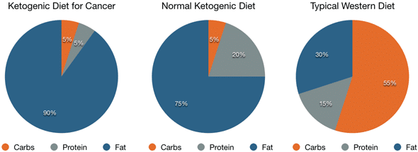 Fat Content in Ketogenic Diet for Cancer, Normal Ketogenic Diet and Western Diet