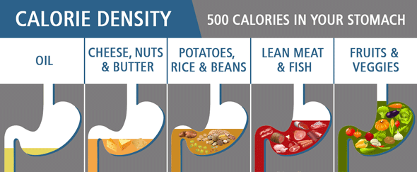 500 Calories in Your Stomach