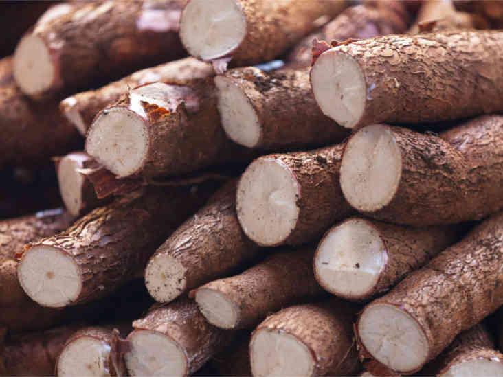 Cassava: Benefits and Dangers