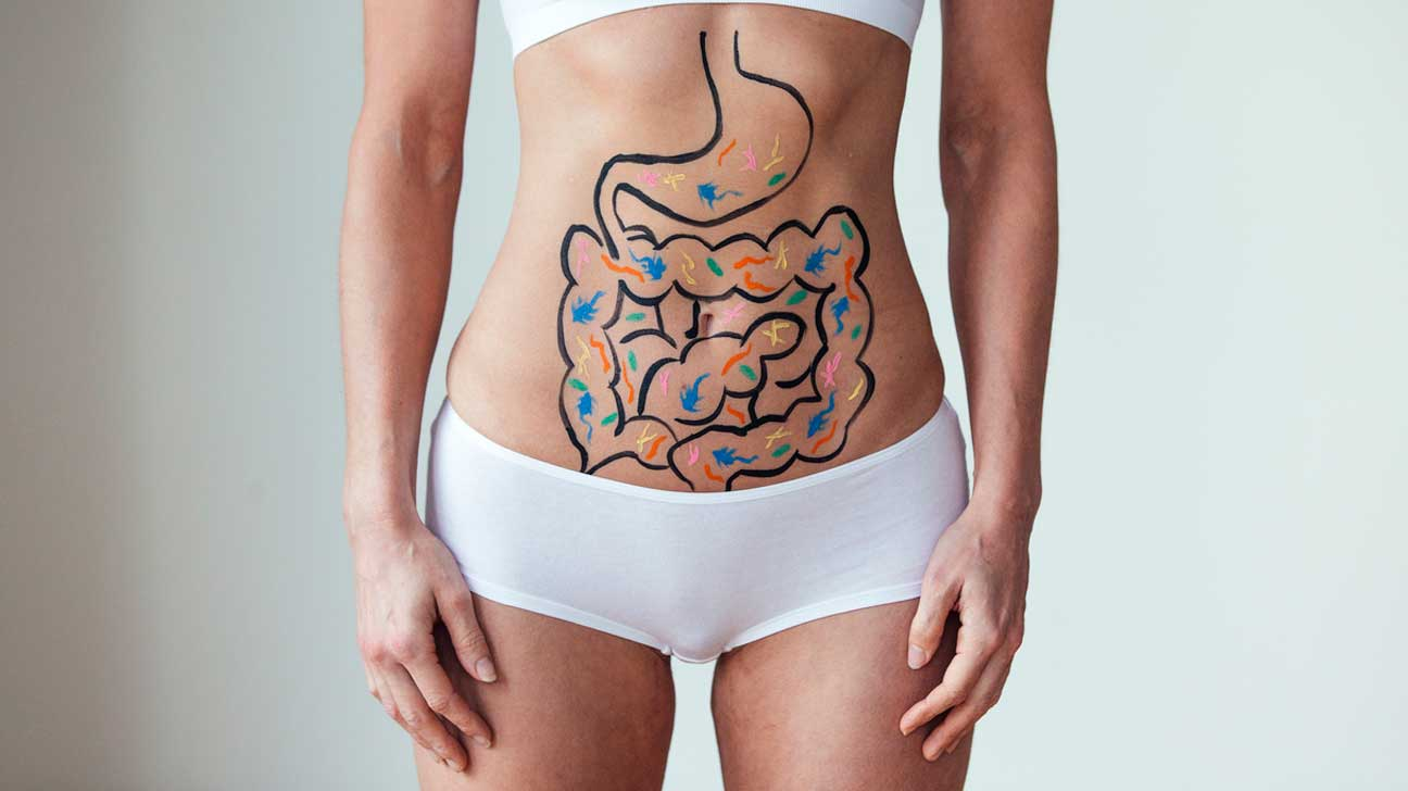 Illustration of Gut Bacteria on Stomach