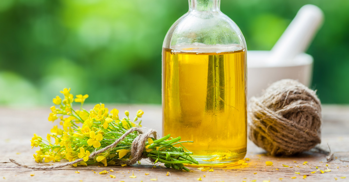 Is Canola Oil Good for You, or Bad?
