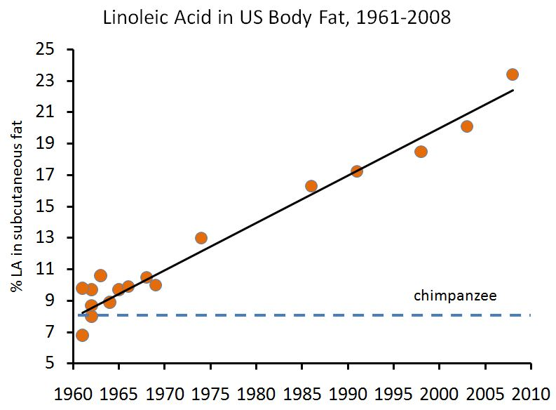 human fat graph