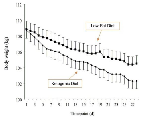 Body weight by Timepoint - Lowfat diet vs Ketogenic diet