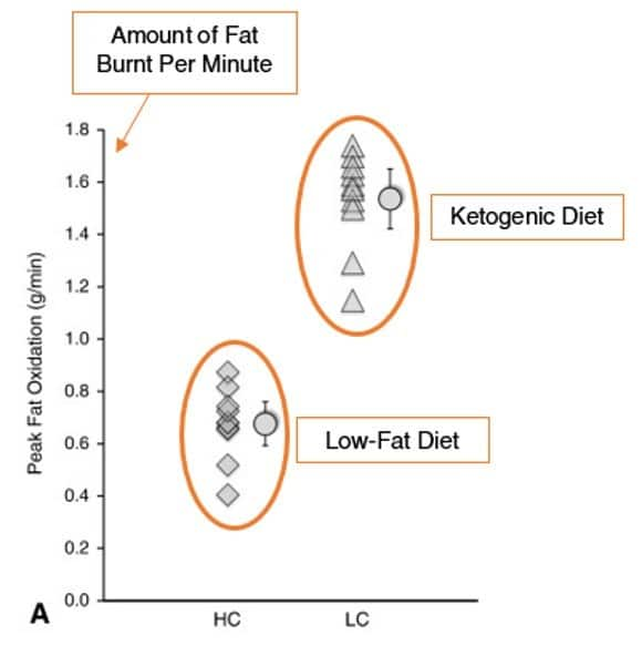 Peak fat oxidization, amount of at burnt per minute - ketogenic vs low-fat diet