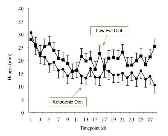 Hunger by timepoint, ketogenic diet vs low-fat diet