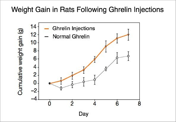 """Ghrelin: The """"Hunger Hormone"""" Explained"""