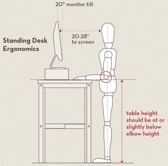 Standing Desk Ergonomics Image