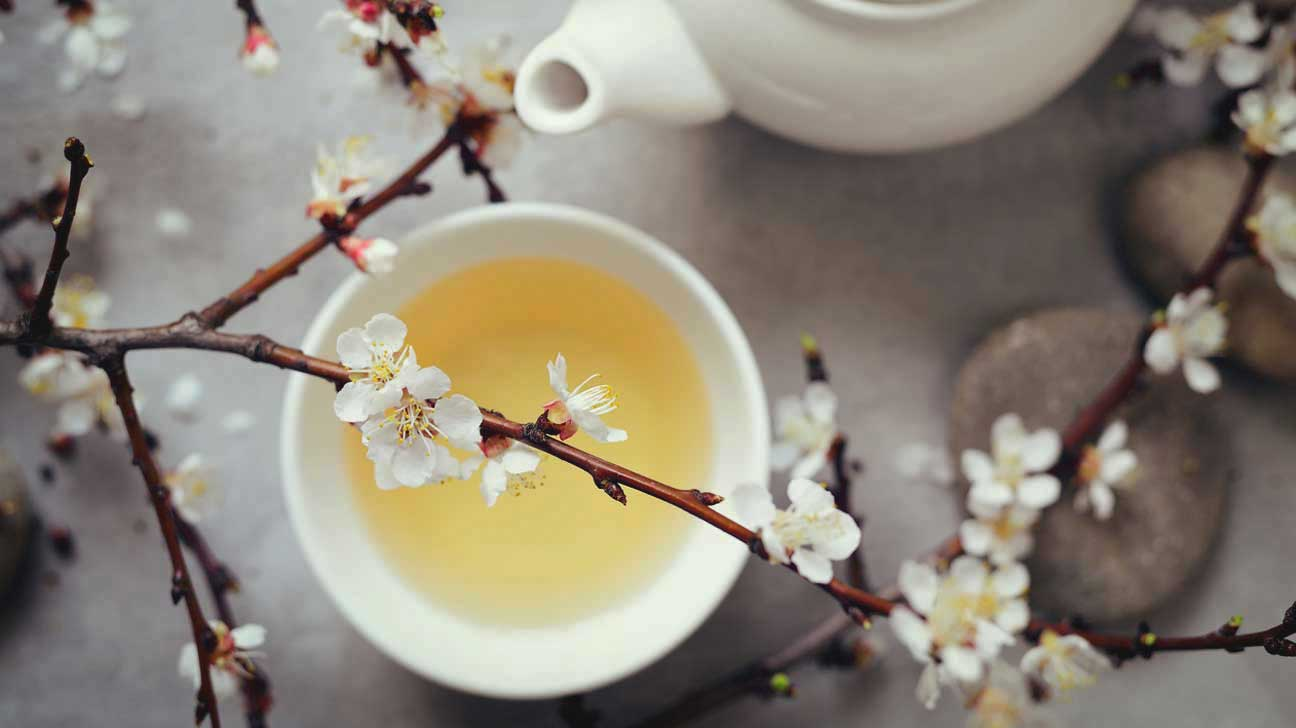 What is white tea made of