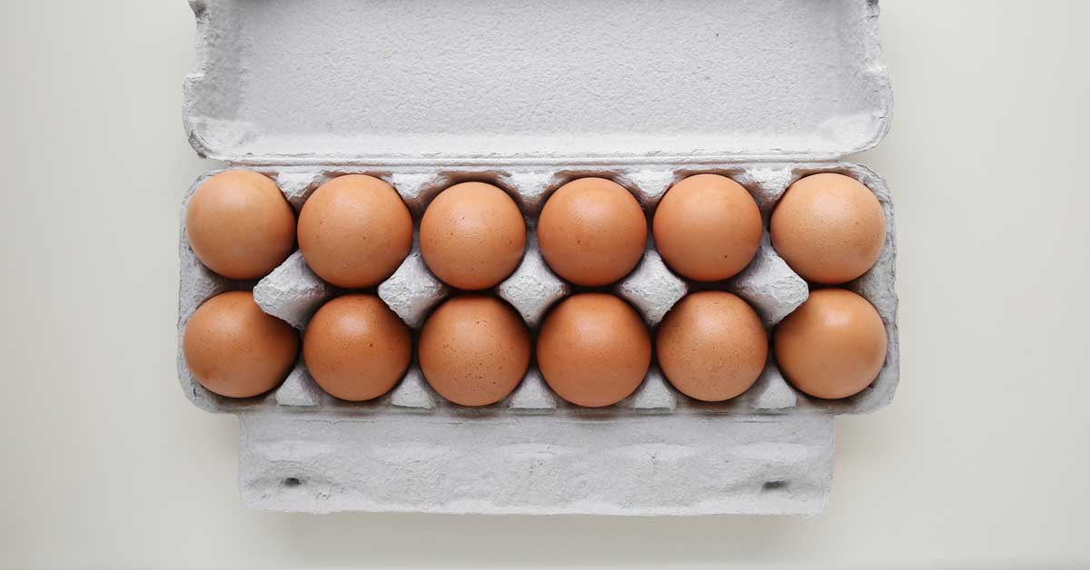 Why Are Eggs Good for You? An Egg-Ceptional Superfood