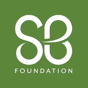 St. Baldrick's Foundation Blog