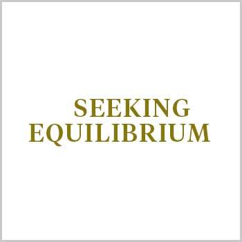 Seeking Equilibrium