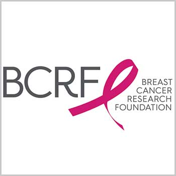 breast cancer relief fund