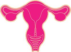 menstrual_changes