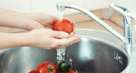 woman washing tomatoes in the sink