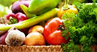 Processed Foods Primer