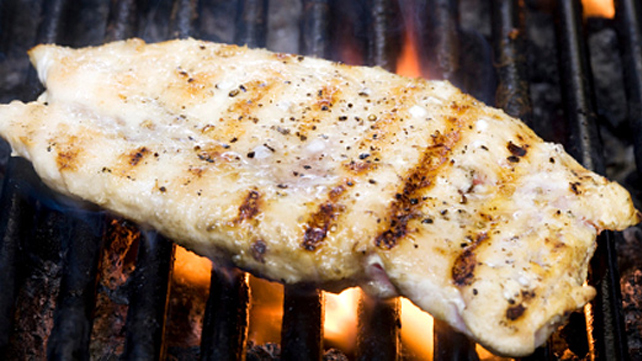 grillled chicken