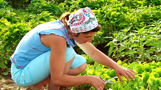 woman gardening outdoors