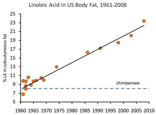 Linoleic Acid in US Body Fat, 1961-2008 Graph