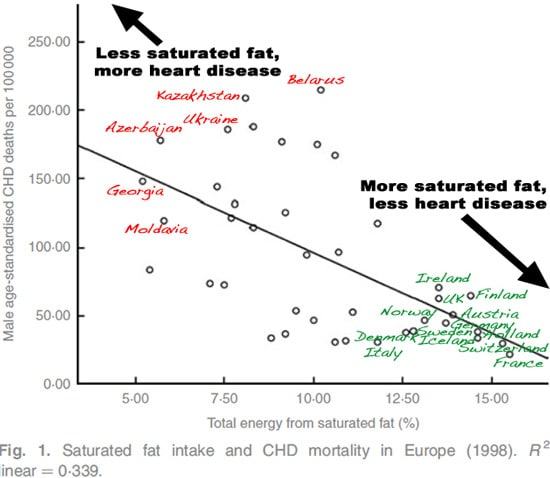 6 graphs that show why the  u201cwar u201d on fat was a huge mistake