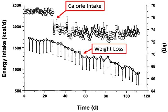 10 striking graphs that show effective ways to lose weight
