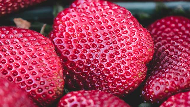 Trypophobia: Is It Real And More?