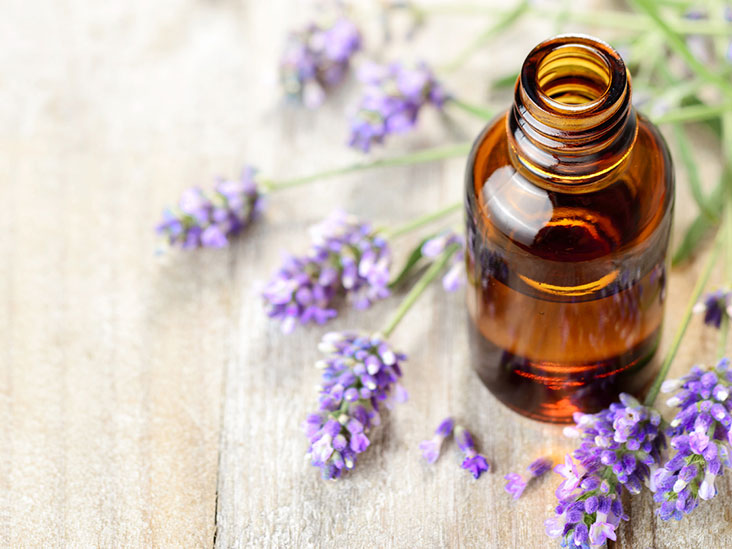 10 Natural Ingredients That Repel Mosquitos