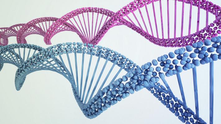 cholesterol and genetics