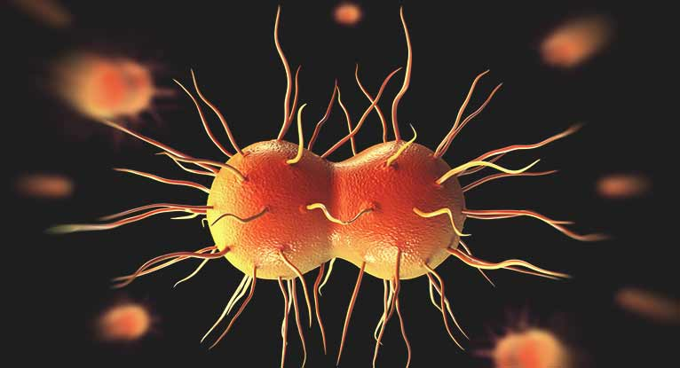 Concerns Over 'Super Gonorrhea' Spreading to the United States