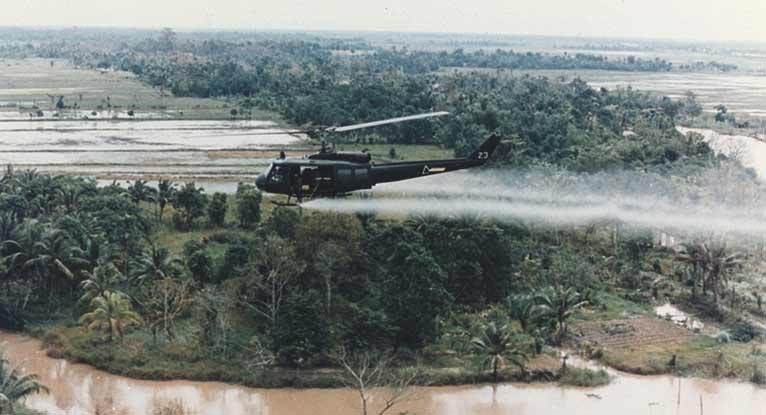 The Lingering Health Effects of Agent Orange