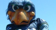 Seattle Seahawks Mascot Blitz Has MS, Raises Funds for Research