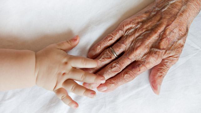 Aging Organs