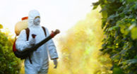 Parkinson's and Pesticides
