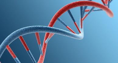 Genes Reveal