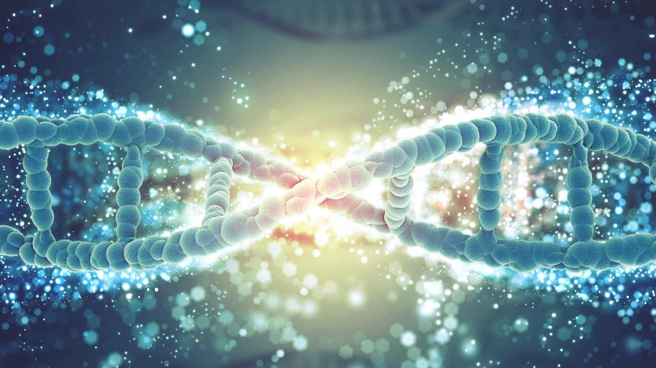 sugar alters genes
