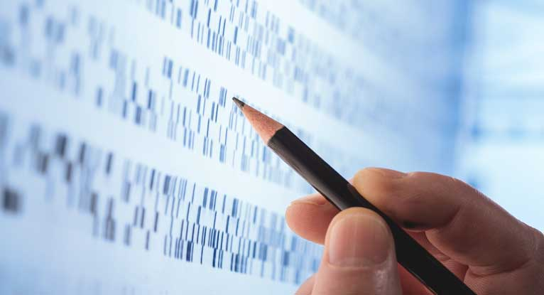 Genetic Test Could Predict Transplant Success in People with Hep C, Cirrhosis