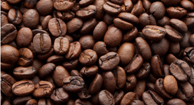 Caffeine and Memory