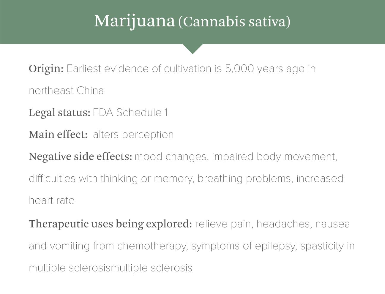 marijuana infopgraphic