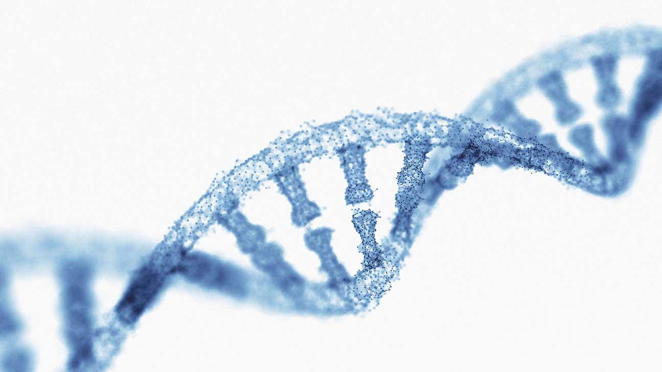 encode DNA