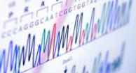 DNA Hacking