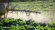 Pesticides and Endometriosis