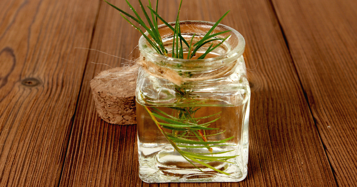Tea Tree Oil for Scabies: Research and