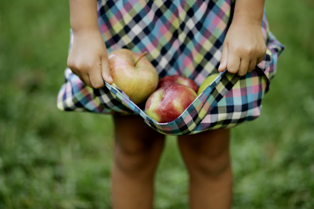 A girl holding a bunch of apples