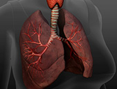 How Severe COPD Affects Your Lungs